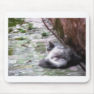 Fluffy cat sleeping crouch on the floor mouse pad