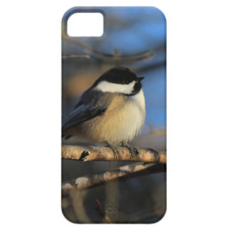 Fluffy chickadee iPhone 5 cover