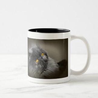 Fluffy Dark Cat with Orange Eyes Two-Tone Coffee Mug