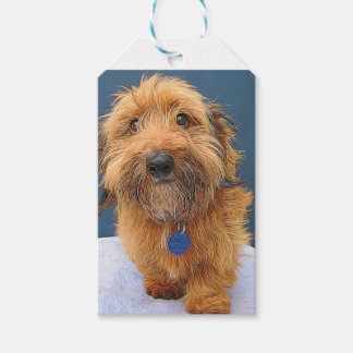 Fluffy Dog Painting Gift Tags