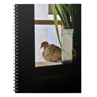 Fluffy Dove Notebooks