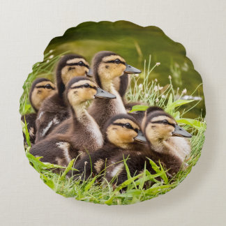 Fluffy Ducklings Round Pillow