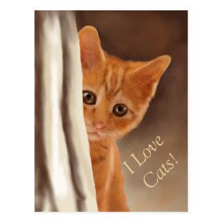 Fluffy Ginger Kitten Behind Curtain Postcard