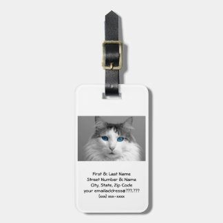 Fluffy Gray and White Blue-Eyed Cat Luggage Tag