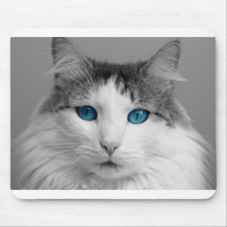 Fluffy Gray and White Blue-Eyed Cat Mouse Pad