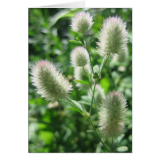 Fluffy Green Note Card