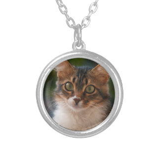 Fluffy Kitten with Green Eyes Silver Plated Necklace