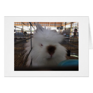 """FLUFFY LITTLE BUNNY IS OUT OF SORTS """"YOU ARE 40!"""" CARD"""