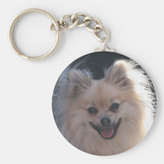 fluffy pomeranian dog keychain