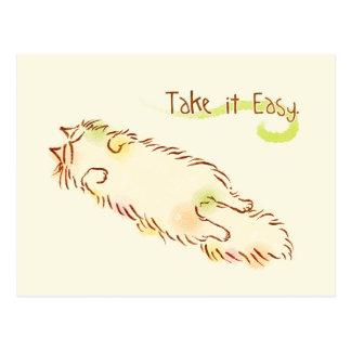 Fluffy Sleepy Cat Take it Easy Postcard