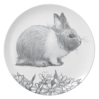 Fluffy the rabbit. Pencil drawing. Plate