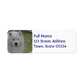 Fluffy White American Eskimo Dog Return Address Label