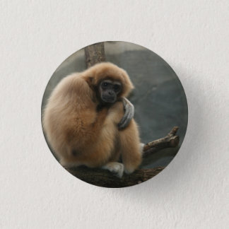 Fluffy white-handed lar gibbon 1 inch round button