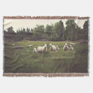 Fluffy white sheep & lamb in green pasture throw blanket