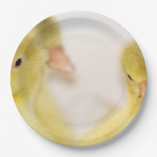 Fluffy Yellow Ducklings Paper Plate