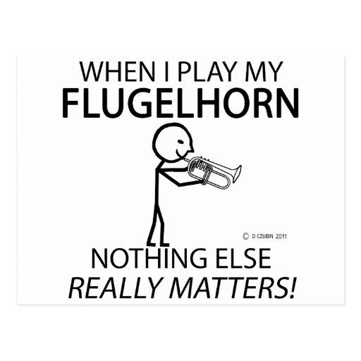 Flugelhorn Nothing Else Matters Postcard