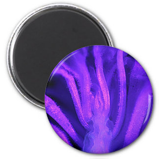 Fluorescent Flower Magnets