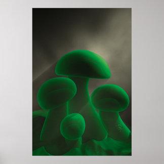 Fluorescent Mushrooms Poster