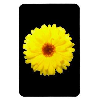 Fluorescent Yellow Marigold Premium Magnet
