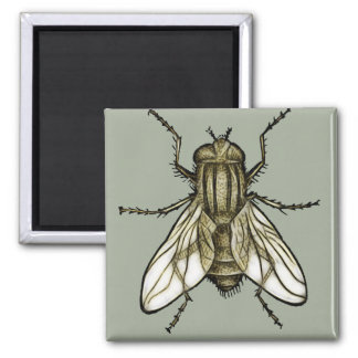 Fly 1a magnet