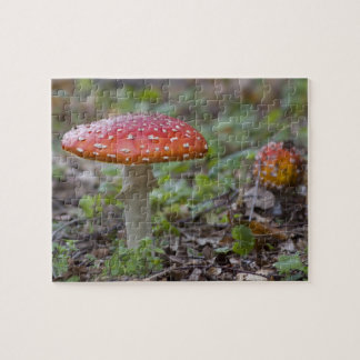 Fly Agaric Toadstool Jigsaw Puzzle