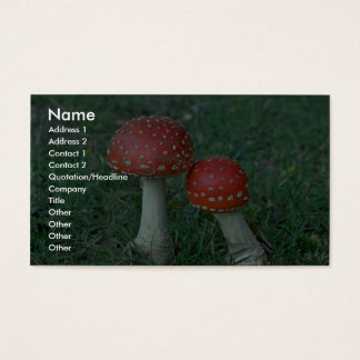 Fly agarics (Amanita muscaria) Business Card