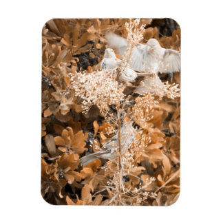 Fly and Perch Rectangular Photo Magnet