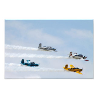 Fly By Photo Print