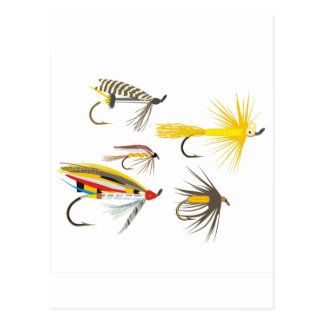 Fly Fishing Lures Postcard