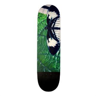 Fly In the wind Skateboard Deck