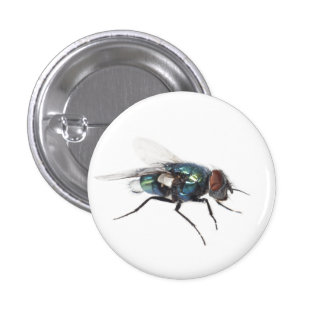 Fly insect 1 inch round button