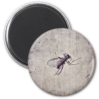 Fly insect inside amber stone | 2 inch round magnet