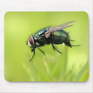 Fly Me Mouse Pad