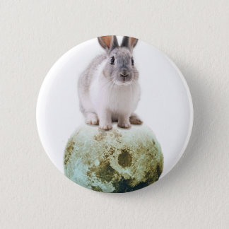 Fly me to the moon 2 inch round button