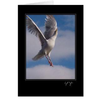 Fly On Sweet Angel Card
