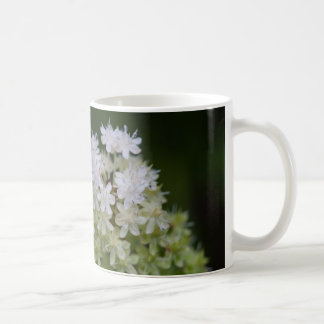 Fly Poison White Wildflower Floral Mug Cup