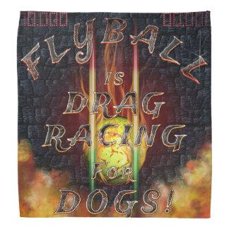 Flyball Flamz: Drag Racing for Dogs! Bandana
