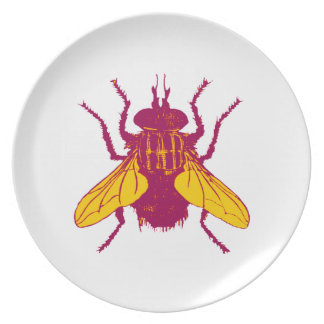 Flyby Plate
