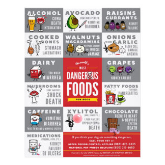Flyers- The World's Most Dangerous Food For Dogs Flyer