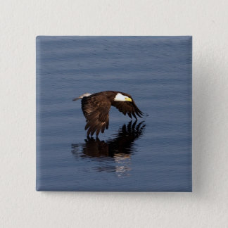 Flying Bald Eagle 2 Inch Square Button