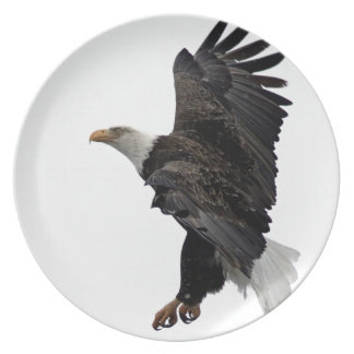 Flying Bald Eagle Plate