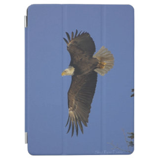 Flying Bald Eagle & Sky Wildlife Photo iPad Air Cover