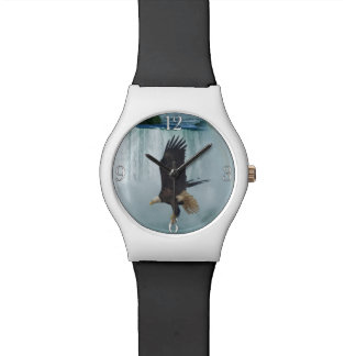 Flying Bald Eagle & Waterfall Nature Scene Watch