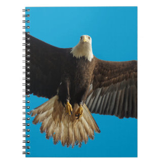 Flying Bald Eagle Wildlife Gift Spiral Note Book