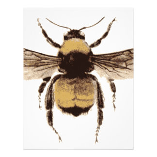 Flying Bee Letterhead