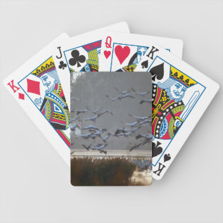 Flying cranes on a lake bicycle playing cards