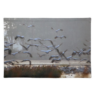 Flying cranes on a lake placemat