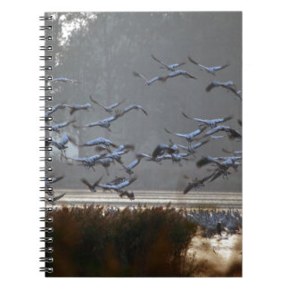 Flying cranes on a lake spiral notebook