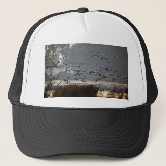 Flying cranes on a lake trucker hat
