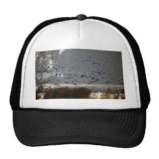 Flying cranes on a lake trucker hat